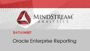 Oracle Enterprise Reporting Datasheet